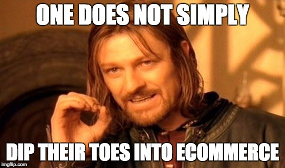 Boromir Meme - one does not just dip their toes into ecommerce